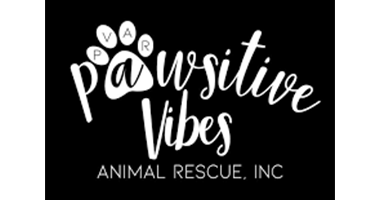 -pawsitive-vibes